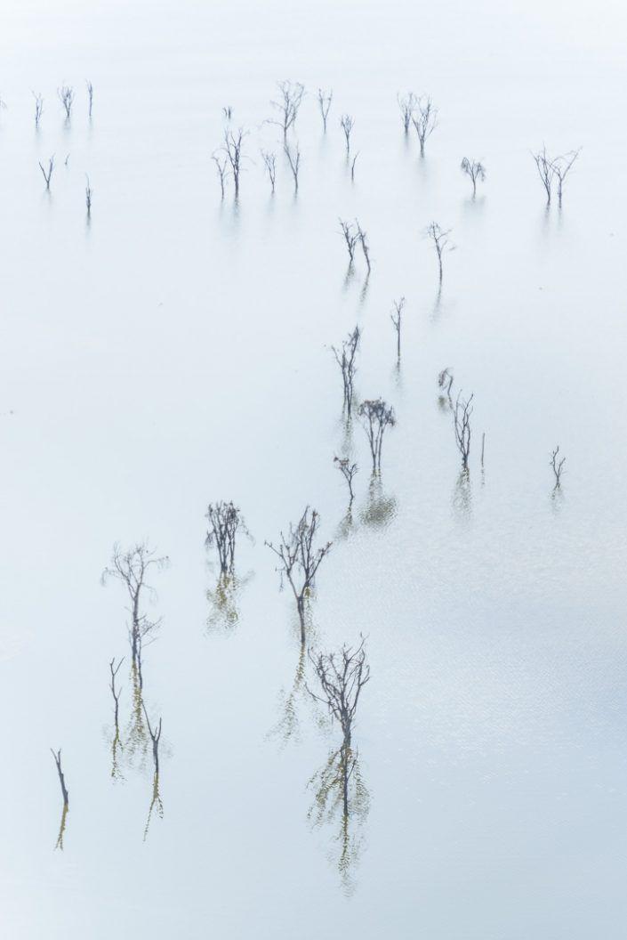 Parque nacional lago Nakuru