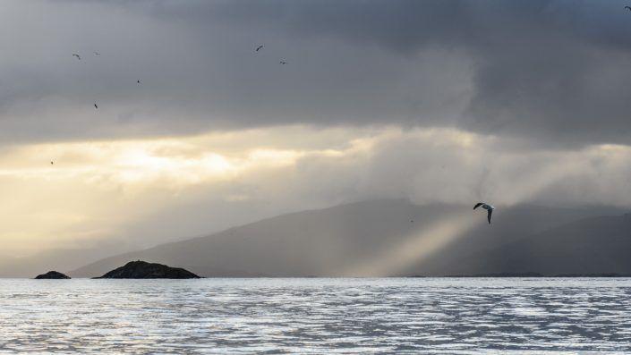 Fiord de Tromso